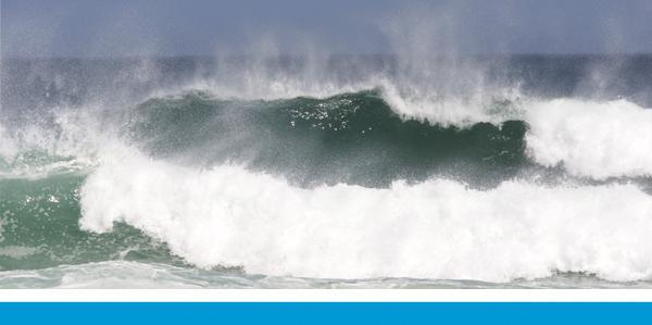 surfdistribution